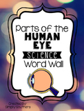 Science Word Wall - Parts of the Human Eye