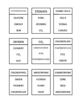 Science Wordz- Plants, A Vocabulary Game
