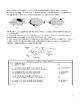 High School Biology Science Worksheet - Classification