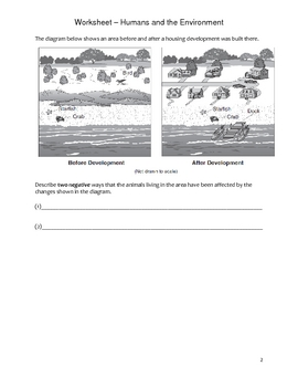 Elementary Science Worksheet - Human Impact on Environment