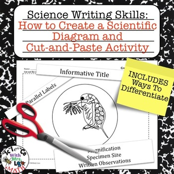 Lab Report Writing Skills How to Create a Lab Diagram and