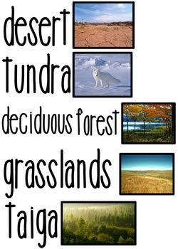 Science & Social Studies Vocab Cards *editable* 153 cards w/pictures