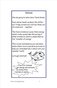 Animals, Food Chains, Science Workbook