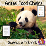 Animals, Food Chains, Science Workbook