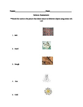 Science assessment texture and senses