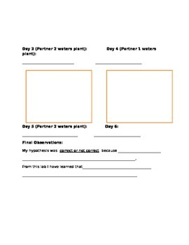 Science bean lab sheet