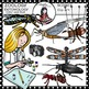 Science clip art: Zoology-Entomology (insects) -Color and B&W-  38