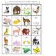 Science for Kindergarten : Animals Resemble Parents