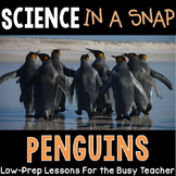Science in a Snap: All About Penguins {Interactive PowerPoint Lessons & More}
