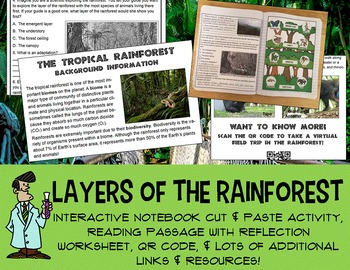 Science interactive notebook rainforest biome adaptation c
