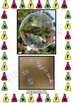 Science - Bubbles - Detailed Lesson Plan For 4-11 Year Olds