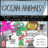 Science of Ocean Animals