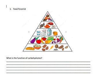 Science paper on nutrition, digestive, circulatory and res