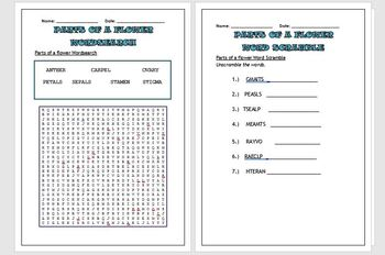 Science puzzles: Parts of a flower (Wordsearch and Word scramble)