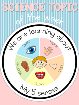 Science topic of the week poster - 5 senses