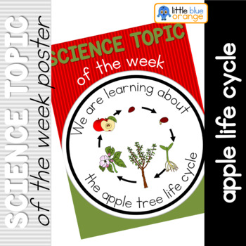 Science topic of the week poster - Apple tree life cycle