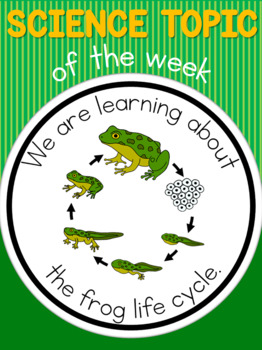 Science topic of the week poster - Frog