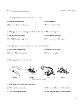 middle school biology worksheet classification by educator super store. Black Bedroom Furniture Sets. Home Design Ideas