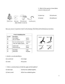 Middle School Biology Worksheet - Classification