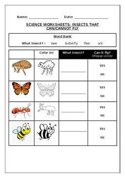 Science worksheet: Insects that can vs cannot fly