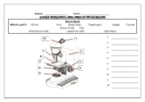 Science worksheet: Label The Parts Of A Microscope