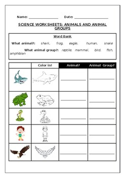 Science worksheets: Animals and Animal Groups