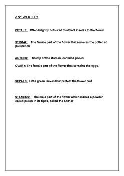Science worksheets: Label parts of a flower