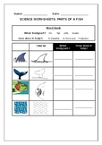Science worksheets: Parts of a fish