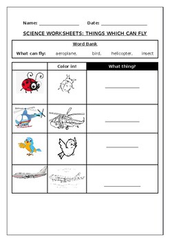 Science worksheets: Things which can fly