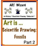 Scientific Drawing: Fossils  - Part 2  (10 Printable Pages) STEAM Art Lesson