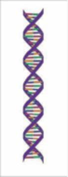 Scientific Explanations Bundle