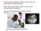Scientific Investigation: How do Scientist Use Tools?