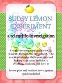 Scientific Investigation - Sudsy Lemon Experiment