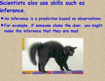 Scientific Investigations Lesson