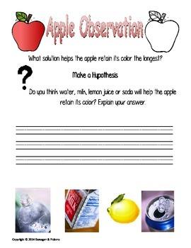 Scientific Method Apple Experiment