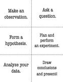 Scientific Method Check for Understanding Cards