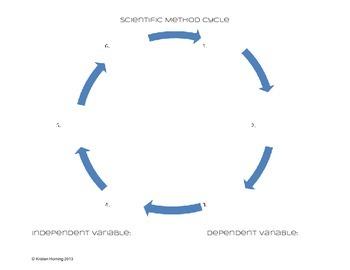 Scientific Method Cycle