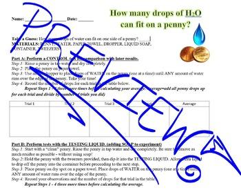 Scientific Method: Drops on a Penny Lab