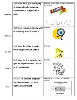 Scientific Method Experiment Vocabulary-definitions, visuals, graphic organizer