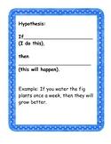 Scientific Method Hypothesis Graphic Organizer