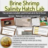 Scientific Method Lab: Brine Shrimp Hatch Rates- Great for