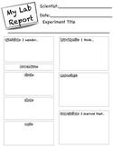 Scientific Method Lab Report