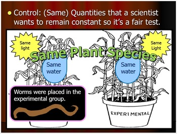 Scientific Method Lesson, Observation Skills