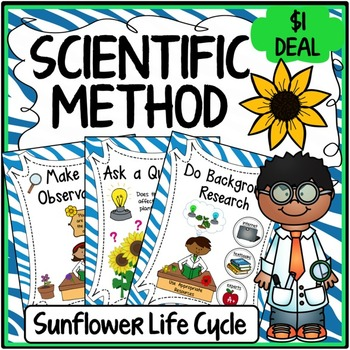 Scientific Method Posters (Sunflower Experiment Themed)