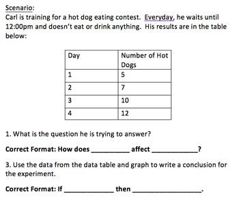 Scientific Method Questioning Worksheet Practice