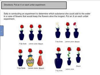 Scientific Method Smart Board Lesson