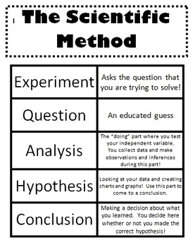Scientific Method Sort