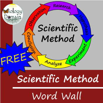 Scientific Method Word Wall Vocabulary Cards
