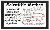 Scientific Method Word Wall