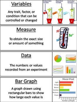 Scientific Method Word Wall Cards